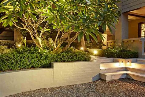 contemporary small living room ideas sydney landscape design maintenance growing rooms