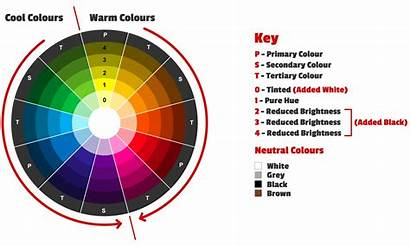 Colours Wheel Colour Complementary Using Step Graphic