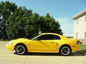 99 Mustang GT- chrome yellow - 33K miles - MustangForums.com