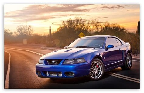 Ford Mustang 4k Hd Desktop Wallpaper For 4k Ultra Hd Tv