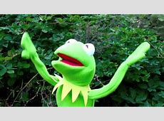 Kermit the Frog Rain Dance! Muppets Gone Wild Sesame