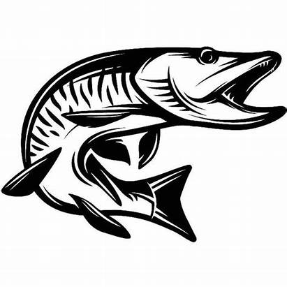 Musky Fish Fishing Hunting Water Fresh Svg
