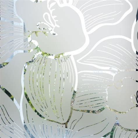 sticker occultant pour vitre  fenetre depoli design