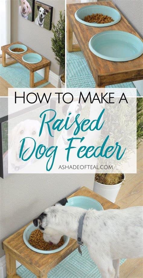 raised dog feeder bloggers  diy ideas