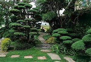 deco jardin feng shui With charming feng shui couleur salon 6 la deco dune maison scandinave
