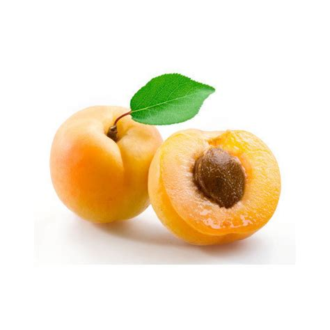 Apricot, खुबानी - Kesco Organics Exports, Coimbatore   ID ...