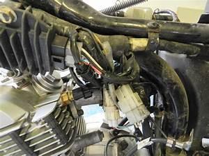 Yamaha Ybr 125 Owner Blog   Yamaha Ybr 125 Engine Removal
