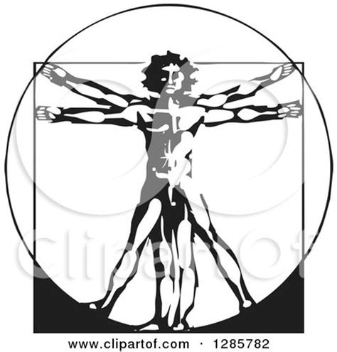 clipart sketched vitruvian man royalty  vector