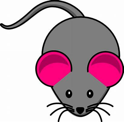 Mouse Pink Ear Gray Clip Clipart Clker