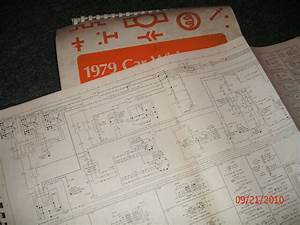 1979 Ford Fiesta Factory Wiring Diagrams Schematics Manual