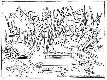 Coloring Landscape Pages Colouring Nature Adult Adults