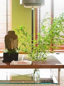 Bilder Feng Shui : feng shui danach einrichten wohnen und die regeln verstehen sch ner wohnen ~ Sanjose-hotels-ca.com Haus und Dekorationen