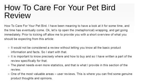 how to take care of a pet bird 8 important tips to take