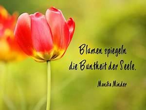 Emotionale Bilder Mit Sprüchen : tulpenbilder kostenlos und lizenzfrei fotografien ~ Eleganceandgraceweddings.com Haus und Dekorationen
