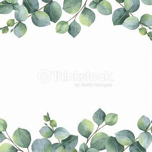 Watercolor Vector Green Floral Card With Silver Dollar ...