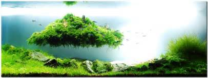 design aquarien aquascape of the month august 2010 quot beyond the nature quot aquascaping world forum
