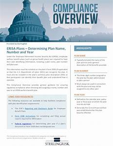 Compliance Overview - ERISA Plans - Determining Plan Name ...