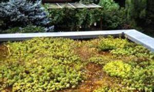 Extensive Dachbegrünung Pflanzen : extensive dachbegr nung ~ Frokenaadalensverden.com Haus und Dekorationen