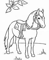 Coloring Horse Pages Miniature Printable Getcolorings sketch template
