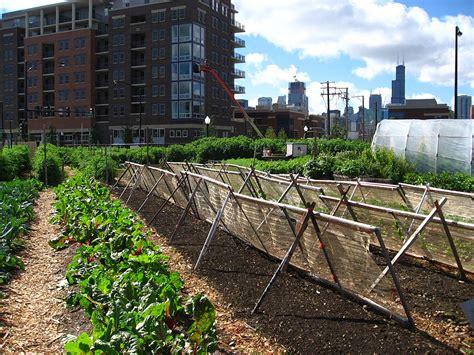 urban agriculture wikipedia