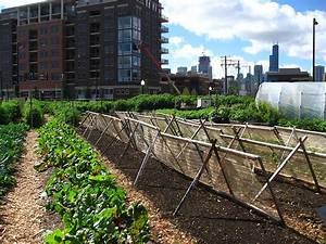 Urban Gardening Definition : urban agriculture wikipedia ~ Eleganceandgraceweddings.com Haus und Dekorationen