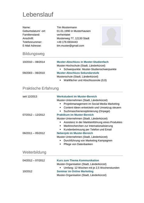Muster Lebenslauf by Lebenslauf Muster F 252 R Lkw Fahrer Lebenslauf Designs
