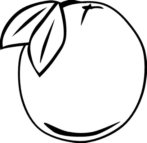 orange outline fruit clip art  clkercom vector clip