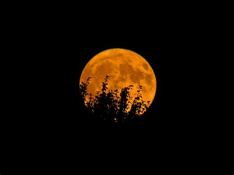 orange full moon  stock photo negativespace