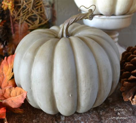 plastic white pumpkins painting pumpkins with chalk paint lilacs and longhornslilacs and longhorns