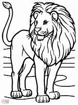 Lion Coloring African Rasta Sheet Animals Printable Lions Sheets Zoo Animal Face Male Getcolorings Template Dari Disimpan sketch template