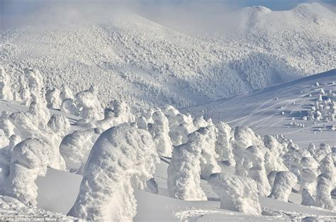 sho shibatas photographs shows japans hakkoda mountains