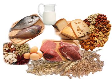 Alimenti Contenenti Fosforo F 243 Sforo En La Dieta Somepar