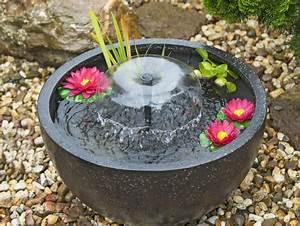 Fontaine Pour Bassin A Poisson : bassin de jardin auchan bassin de jardin ~ Voncanada.com Idées de Décoration