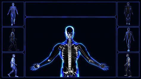2 3d Vitruvian Man Cyborg Double Models Animation Alpha