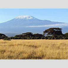Kilimanjaro Climb  Earth's Edge