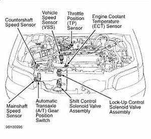 Wiring Diagram Honda Accord 1997