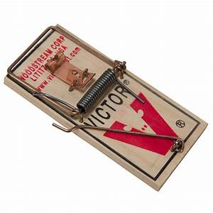 Victor Standard Mouse Trap