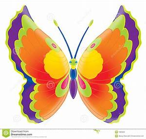 Butterfly Stock Photo - Image: 1985920