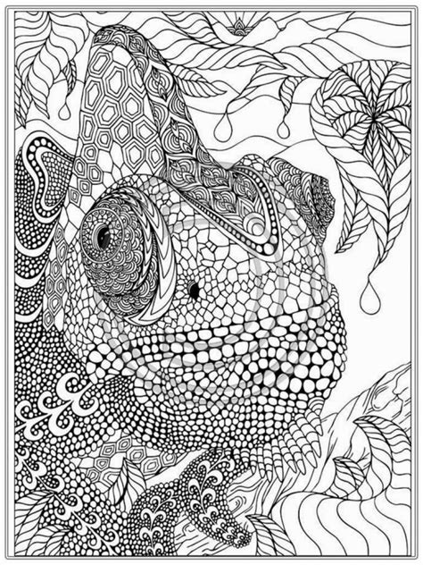 coloring pages  printable coloring pages  adults