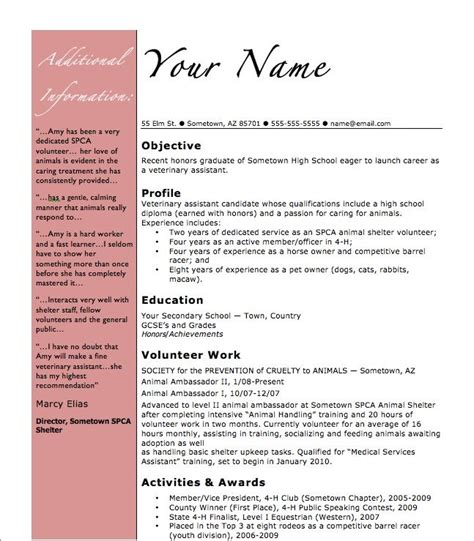 high school student resume template  basic resume
