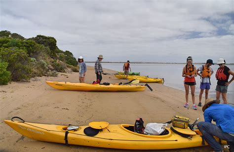 Canoes Adelaide canoe the coorong adelaide