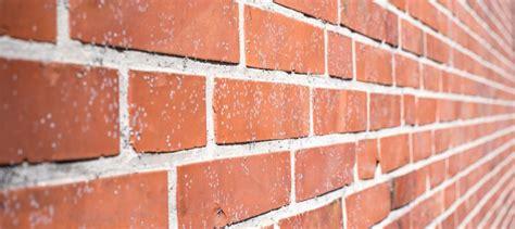 refaire les joints d un mur en brique