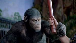 Rise of the Planet of the Apes: A Review | thesplitscreen