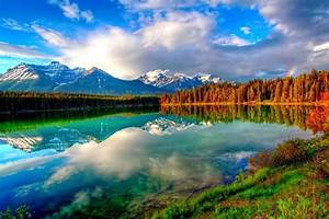 Nature Backgrounds, Hd Wallpapers, Windows, Beautiful ...