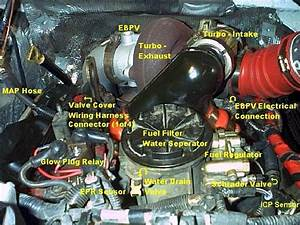 Engine Diagram  Pictures  With Labels