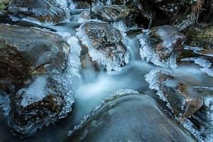 Rasenpflege Nach Dem Winter : auf der suche nach dem winter forum f r naturfotografen ~ Orissabook.com Haus und Dekorationen