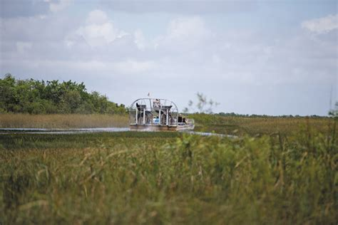 Everglades Boat Trip by Everglades Go With The Flow Geographical