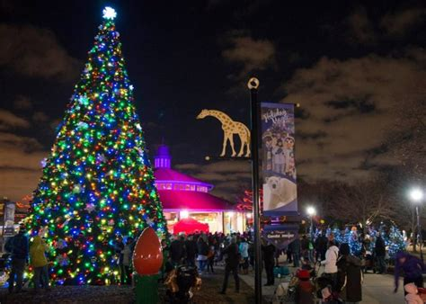 Brookfield Zoo In Chicago Has Over 1 Million Holiday Lights