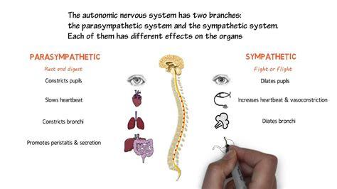 pots postural tachycardia syndrome  eds