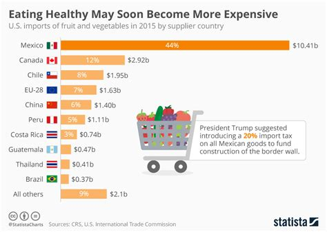 Will President Trump Tax Fruit And Vegetables Comeing From Mexico? Flow Chart Of Photosynthesis And Cellular Respiration For Division Two Numbers Tikz Nodes Flowchart Central Nervous System Math Smc Create On Mac Free Tenses Notes